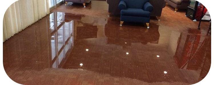 Expert Flood Damage Restoration Gisborne