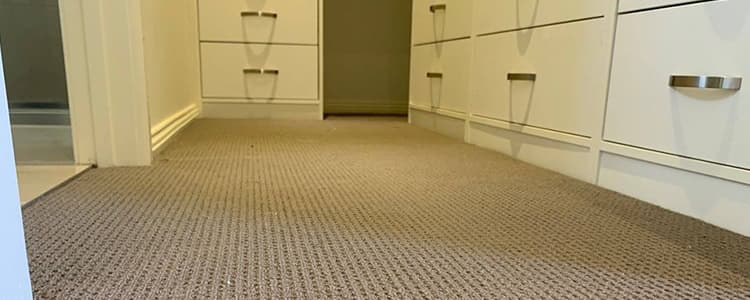 End Of Lease Carpet Cleaning Gisborne